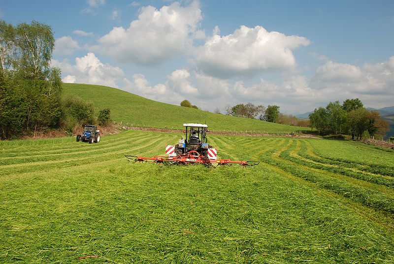 Formation of hay windrows (on the right) during reaping and hay making in a meadow. © Roland Darré, Wikimedia CC by-sa 3.0