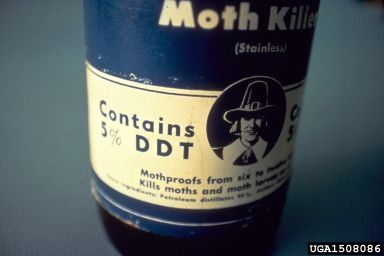 DDT was widely used as an insecticide, before it was discovered to be a persistent organic pollutant. © USDA Forest Service - Region 8 Archive, USDA Forest Service, Bugwood.org CC by 3.0