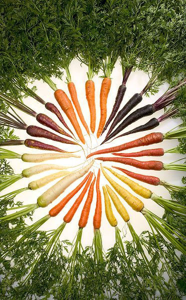 There are many varieties of carrots. © DR