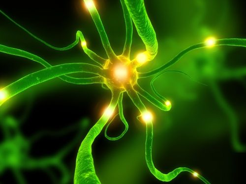 Epilepsy is a neuronal disorder affecting approximately 400,000 people in France. © DR