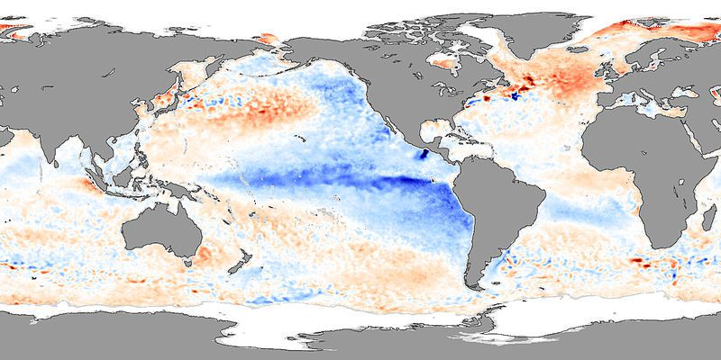 In 2007, La Niña caused temperature anomalies. On the map, the cool colours (blue) represent a negative anomaly, or a drop in temperature. One can see the cooling of the surface water in the East Pacific and particularly along the American coasts. © Nasa - Jesse Allen
