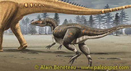 Reconstruction of an Allosaurus attacking a Diplodocus. © Alain Bénéteau