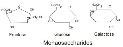Structure of the most common oses (monosaccharides) © Boumphreyfr, Wikimedia CC by-sa 3.0