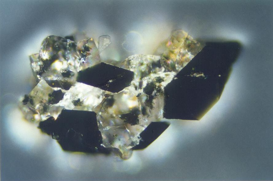 Grain of maricite in a reflection microscope. © 2.ulg.ac.be