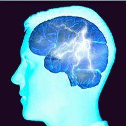 Focal (or partial) epilepsy is one of the forms of epilepsy, together with generalised epilepsy. © web-libre.org