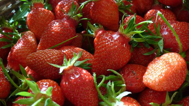 The garden strawberry is a variety of strawberry created in France. © Philippe de France, Flickr, CC by-nc-sa 2.0