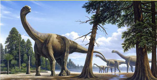 The Cretaceous-Tertiary biotic crisis is one reason why the dinosaurs disappeared. © Raul Martin