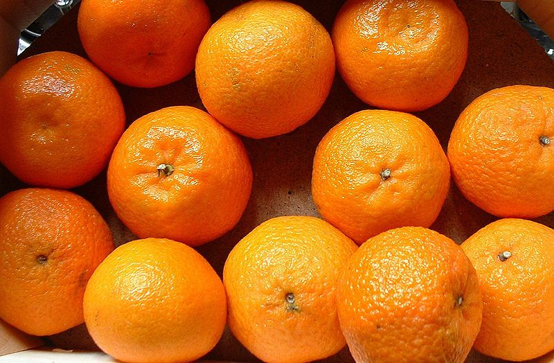 Clementines are fruit full of vitamin C. © Wikimedia Commons