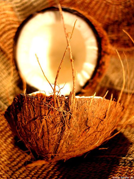 Coconut is very high in calories. © Wikimedia Commons