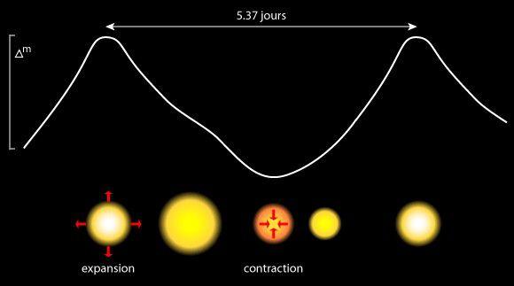 The Delta Cephei brightness curve. Credits DR