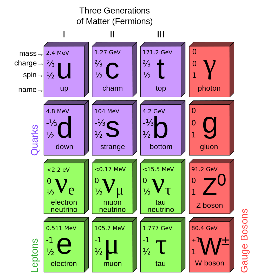 The table of elementary particles in the standard model which includes the down quark. © MissMJ, Wikipedia