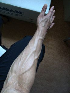 Supination is a rotating movement of the forearm. © Taleb247, Flickr, public domain