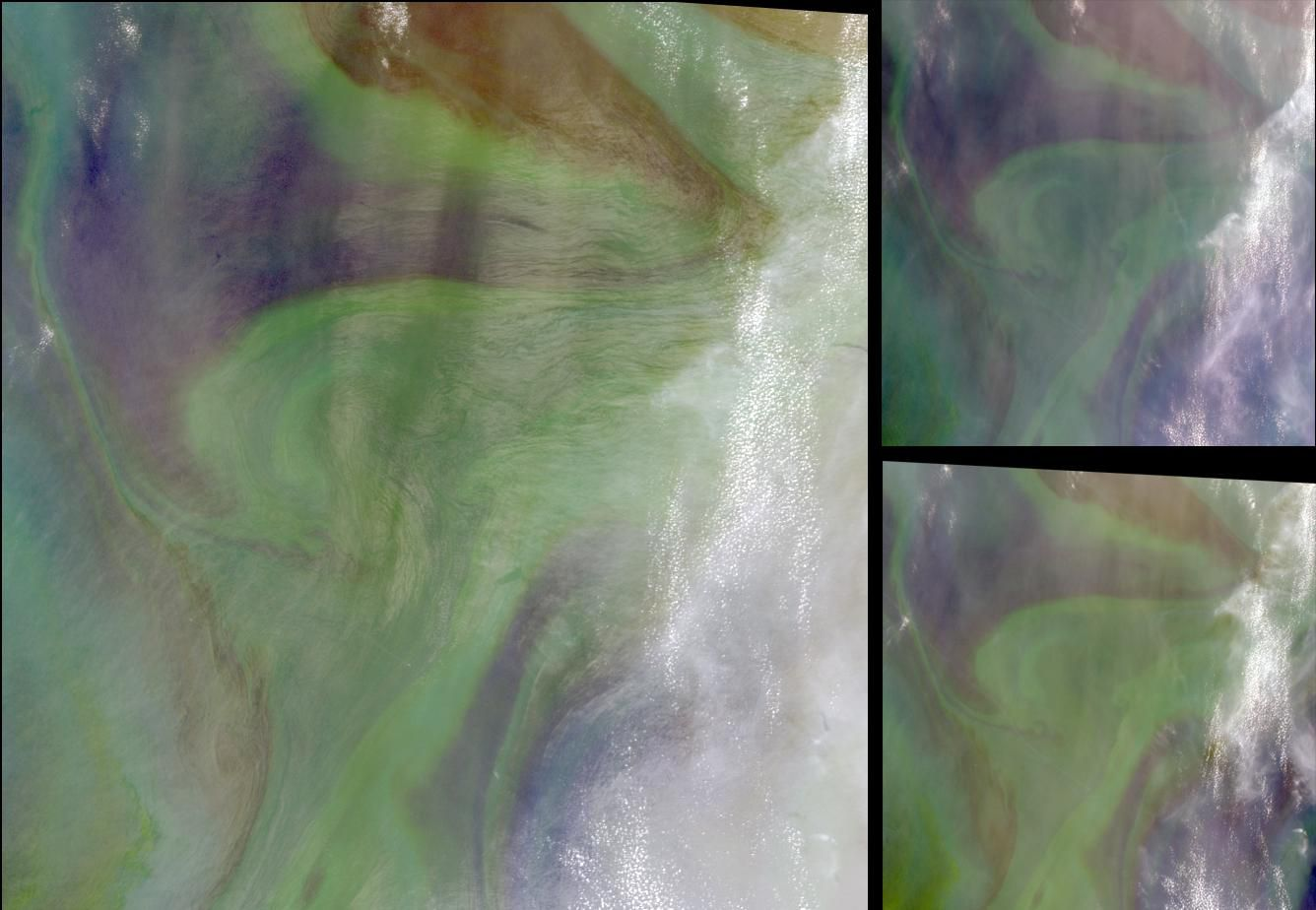 A phytoplankton bloom resulting from the natural fertilisation of the Oman Sea by sandstorms rich in iron. © Nasa / GSFC / LaRC / JPL, MISR Team