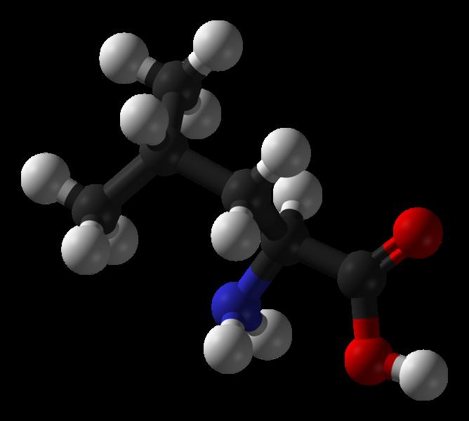 Leucine is also a flavour enhancer. © Benjah-Bmm27, Wikimedia, public domain