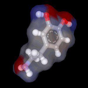 A molecule of dopamine. © lecerveau-mcgill.ca