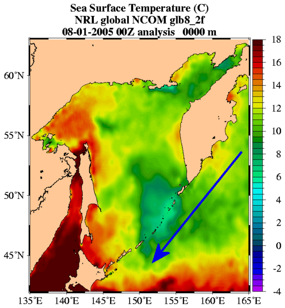 The Oyashio Current formed by the surface temperatures of water masses. © US Marine-Naval Research Laboratory, Global NLO Nowcast Forecast, public domain