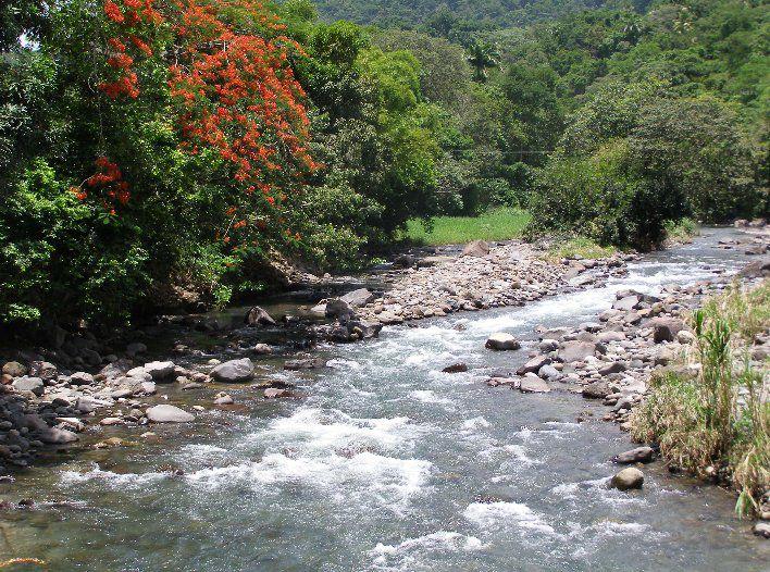 The banks of a river.© christine.overblog.com