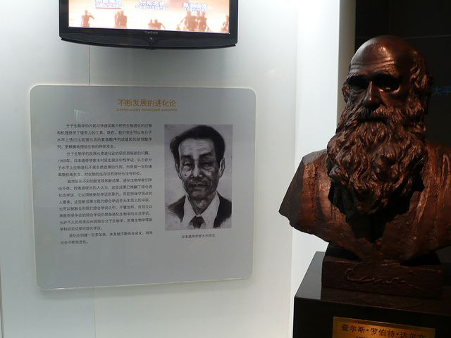 Mooto Kimura (on the left), the father of the neutralist theory of molecular evolution, alongside Darwin (on the right).... © loronet CC by-nc-nd 2.0