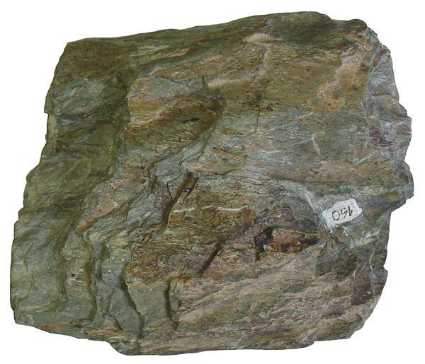 Schist is a metamorphic rock. © Maksim, Wikipedia CC by sa 3.0