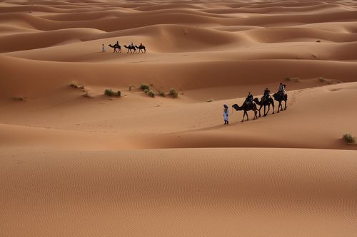 There are many ergs in the Sahara. © Alex Lichtenberger, Flickr CC by-nc-nd 2.0