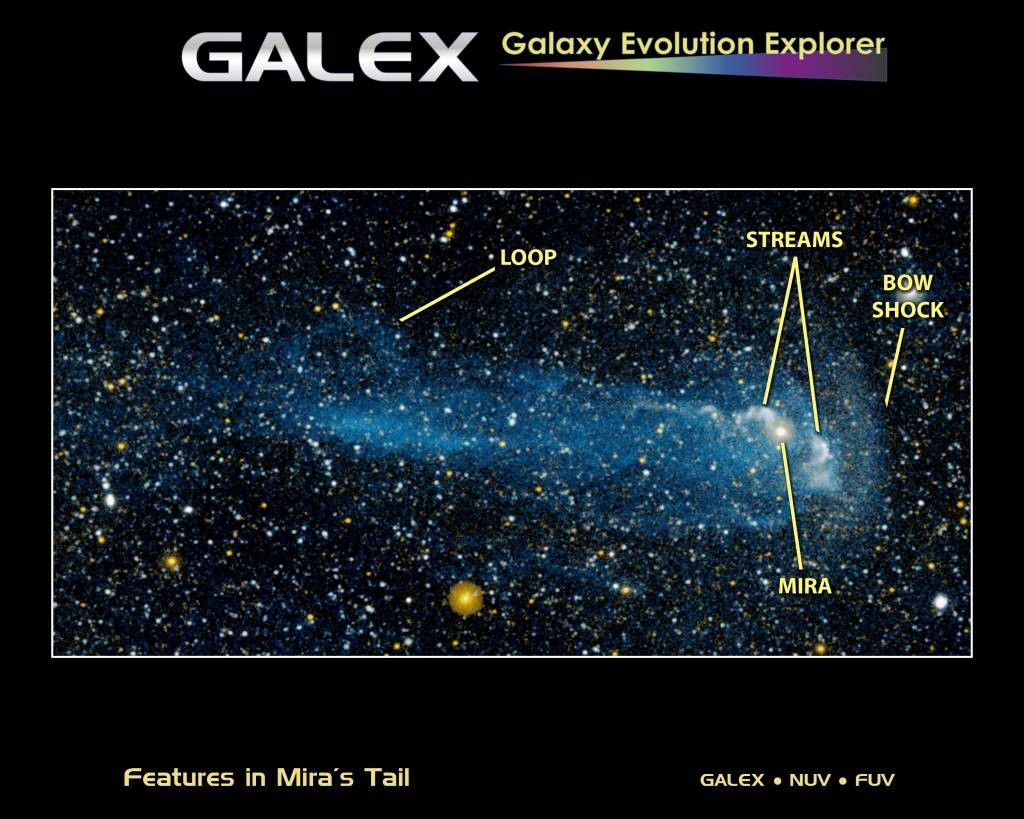 A gas tail 13 light-years long is escaping from the Mira Ceti variable star. Credit Galex/Nuv/Fuv