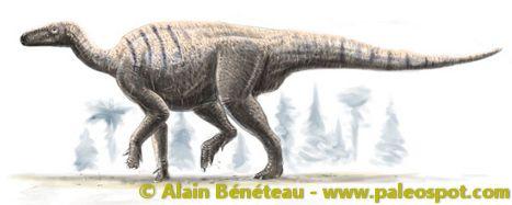 Reconstruction of an Iguanodon. © Alain Bénéteau