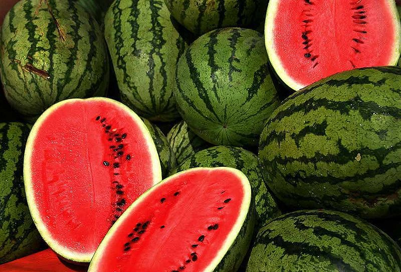 The watermelon, or icebox melon, has a high water content, which makes it a great summer treat. © Steve Evans, cc-by-2.0