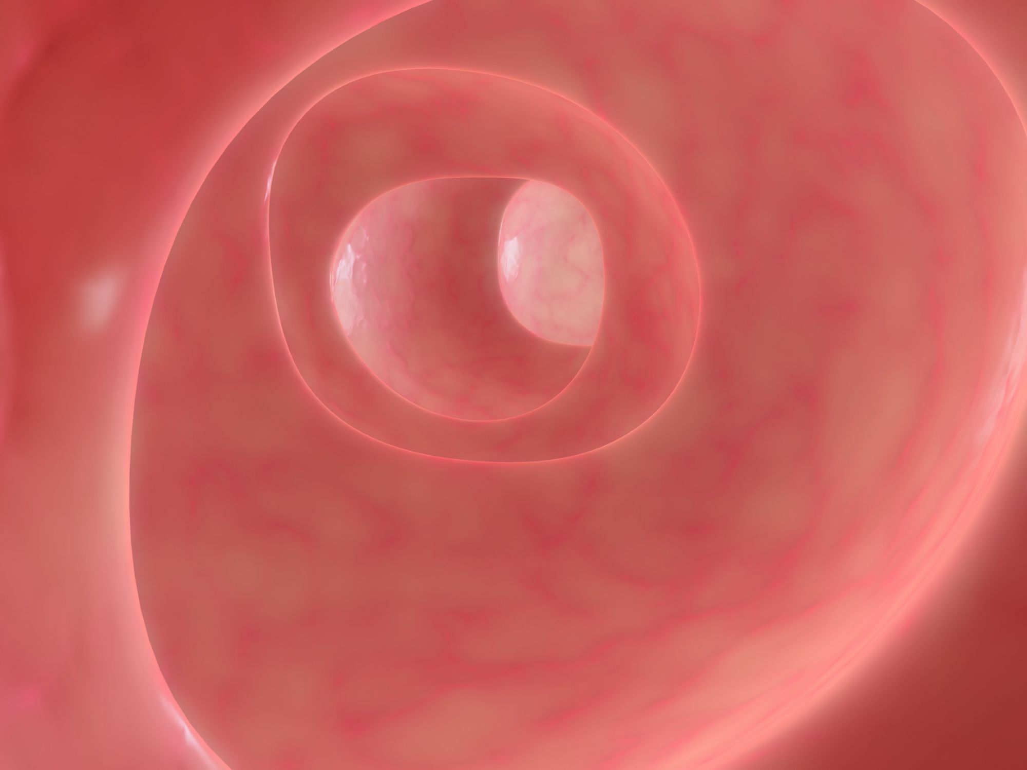 Colonoscopy involves the colon. © Sebastian Kaulitzki, Fotolia