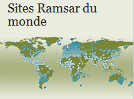 Location of wetlands listed in the Ramsar Convention from around the world. © Ramsar Convention