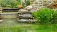 Riparian plants are used for natural pools. © DR