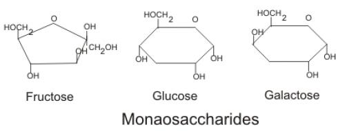 Definition  U0026gt  Monosaccharides