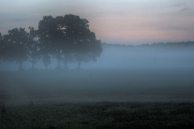 Mist at dawn. © 1suisse CC by-sa 2.0