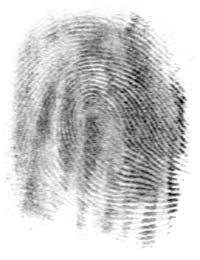 A fingerprint © Wikipedia by-sa 3.0