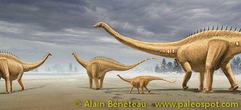 Reconstruction of a heard of Diplodocus, from the Courtedoux footprints. © Alain Bénéteau