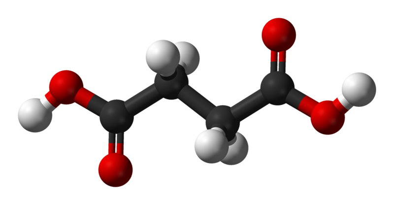 Succinic acid is the protonated form of succinate. © Ben Mills, Wikimedia, public domain