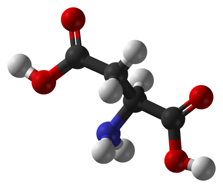 Aspartic acid is an acid amino acid (the carbon atom is shown in black, the oxygen in red, nitrogen in blue, and hydrogen in white). © Ben Mills, public domain