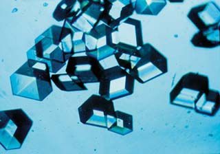 Insulin is a blood glucose lowering hormone. Here, it is in crystal form. © Nasa, Wikimedia, public domain